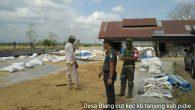 Permalink ke Danramil 08 Kembang Tanjong Bersama Balai Penyuluh Pertanian Melaksanakan Anjangsana Ke Kilang Penggilingan Padi