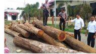 Permalink ke Polres Bireuen Ciduk 1 Orang Pelaku Ilegal Logging