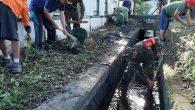 Permalink ke Jelang Lomba Desa Timuran , Babinsa Dan Warga Kompak Kerja Bakti
