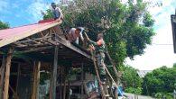 Permalink ke Dukung Tugas Pokok Satuan, Babinsa 06/Barabai Bantu Perbaiki Rumah Warga Binaan